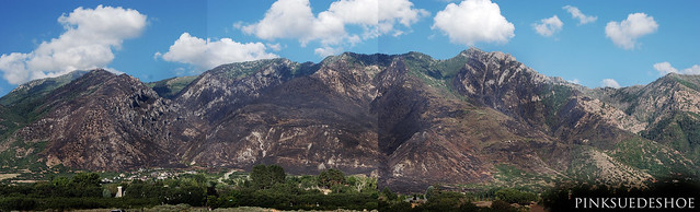 East Mountain Burn