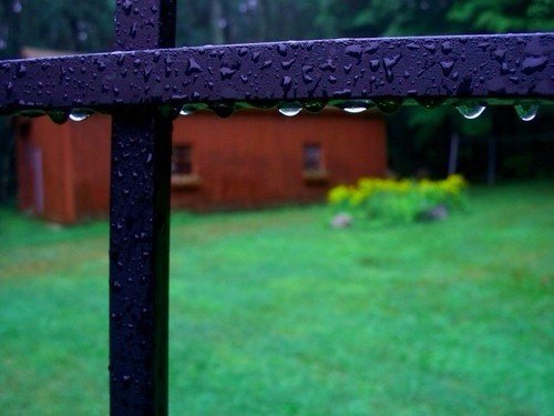 Rainy Summer Morning by Christopher OKeefe