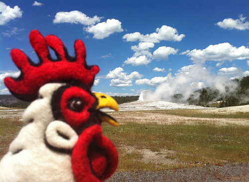 Felted Chicken Head at Old Faithful in Yellowstone