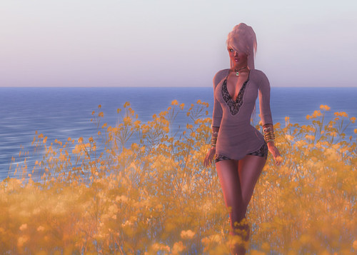 Fields of gold by Fred (AnselCash)