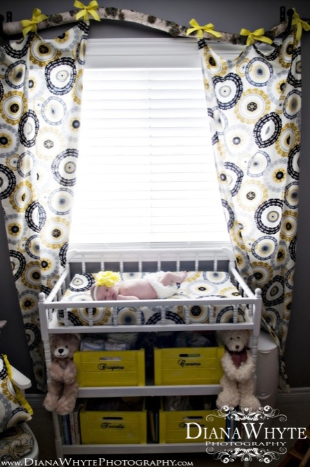 Paisley's Nursery 07