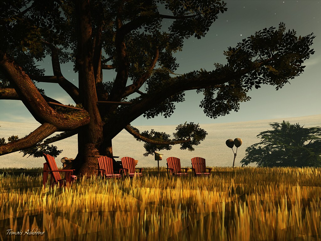 Big tree (by Tomais Ashdene)