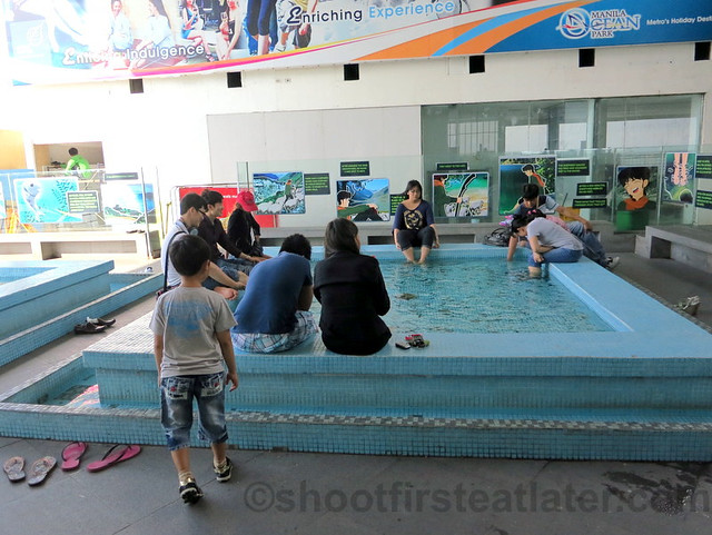 Manila Ocean Park's fish spa