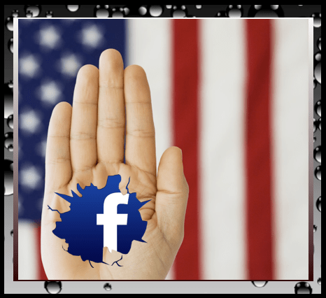 Facebook and Politics