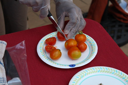Preparing Marguerite's cherry tomatoes for judging