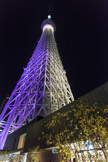 Tokyo Skytree y alrededores-7