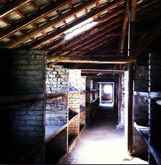 Trip to Birkenau and Auschwitz