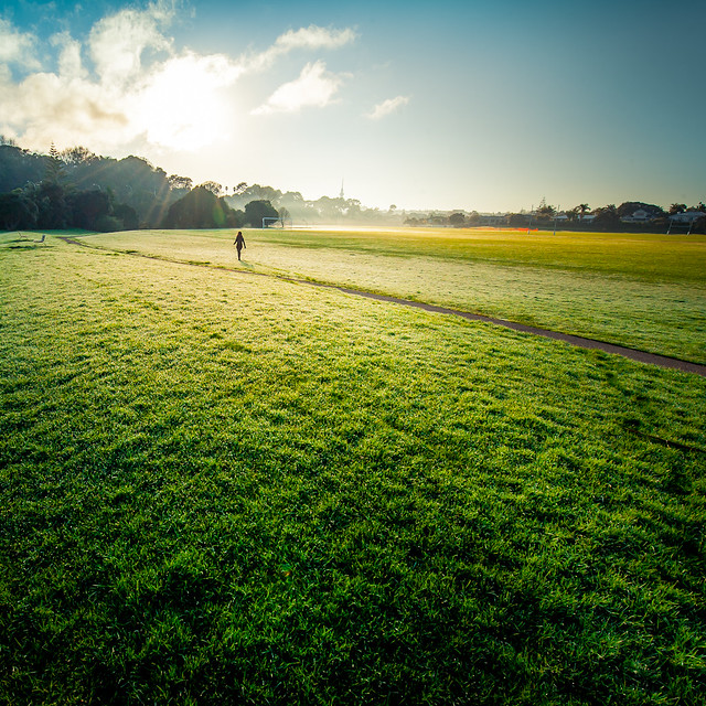Grass Pathway