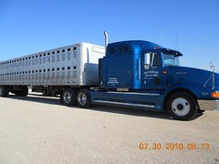 Single Dec Truck At 2010_7_30_USA_LA JUNTA AUCTION_SM (13)
