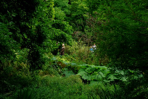 20120831-19_Upton House Gardens - In The Bog Garden by gary.hadden