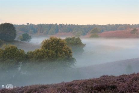 Layered Landscape #posbank @Veluwezoom