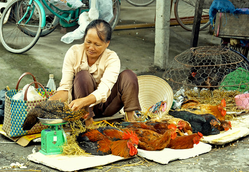 Live chicken vendor in Vietnam