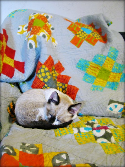 Diego Sleepy Quilt 3