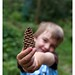 Pine Cone in the hand