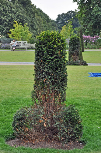 GWL Dubious Topiary in Kensington Palace Gardens - W2