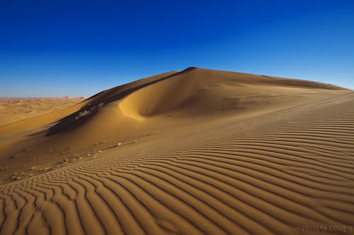 Sand Texture by TARIQ-M