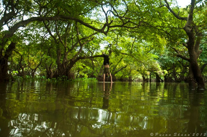 A Refreshing Moment at Ratargul Swamp Forest II