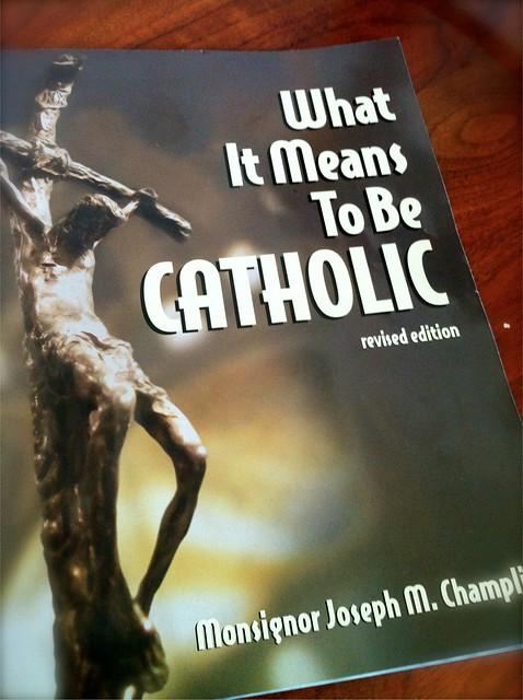 catholic study book