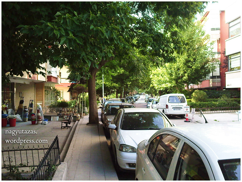 Augusztusi pillanatképek Ankarából 26