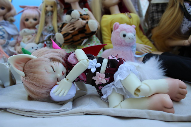 Sleepy Soom kitty