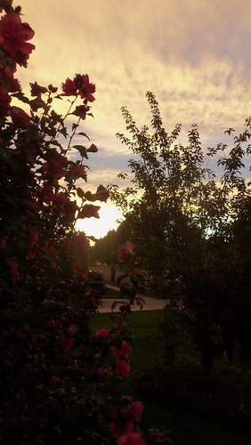 Sunset out my front door... by ruthiequilts