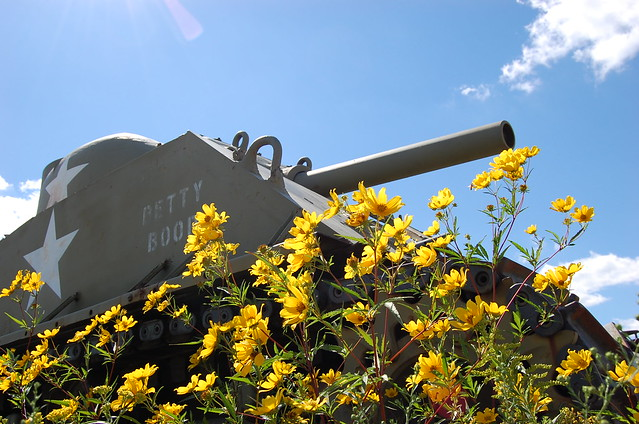 retired army tank parked in yellow wildflowers