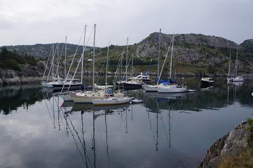 Brigus Harbour