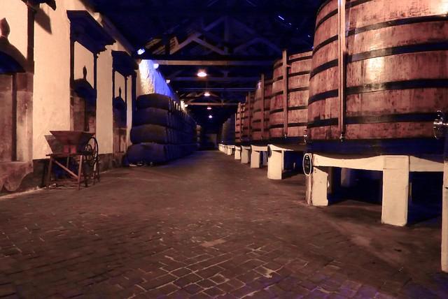 Ferreira cellar