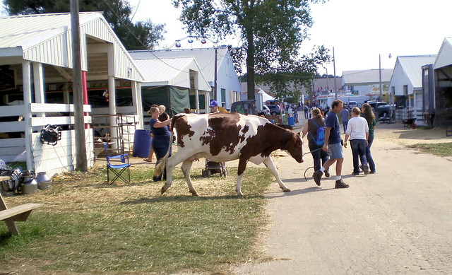 Kenosha County Fair, Wisconsin