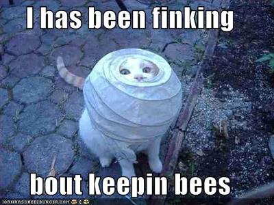 Keepin Bees