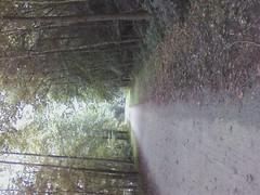 Ohiopyle rail~trail by ladywriter47