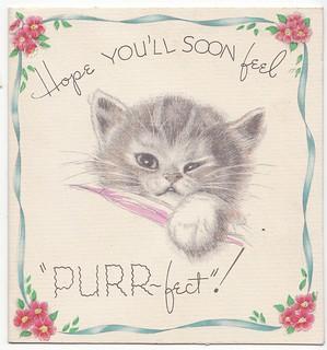 Flu in cats - Feel better soon