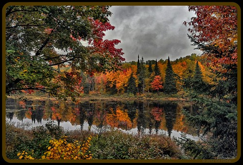 Laurentians - Fall reflections