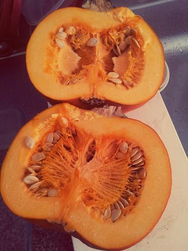 Pumpkin Innards