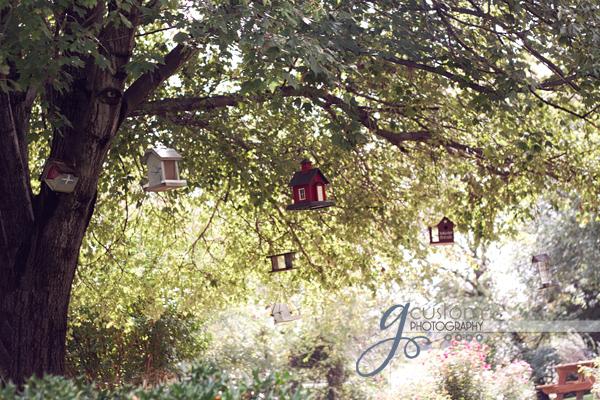 39 - birdhouses 3