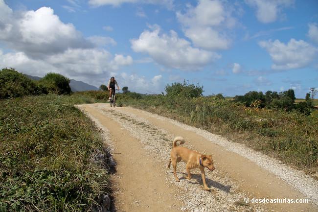 Playa de la Huelga Llanes playas Asturias  Playas de