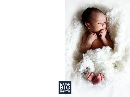 Introducing Erfan | Newborn Portraiture
