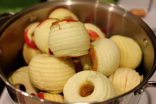 20120830. More apple sauce.