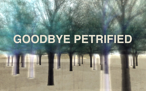 Goodbye Petrified by CapCat Ragu