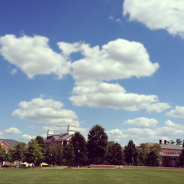 [254/366] Pretty Skies on Campus