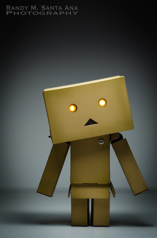 Danbo Adventures: Danbo Arrives.