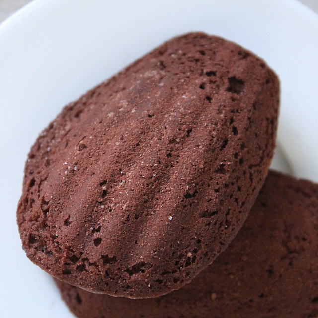 Malted Chocolate Madeleines