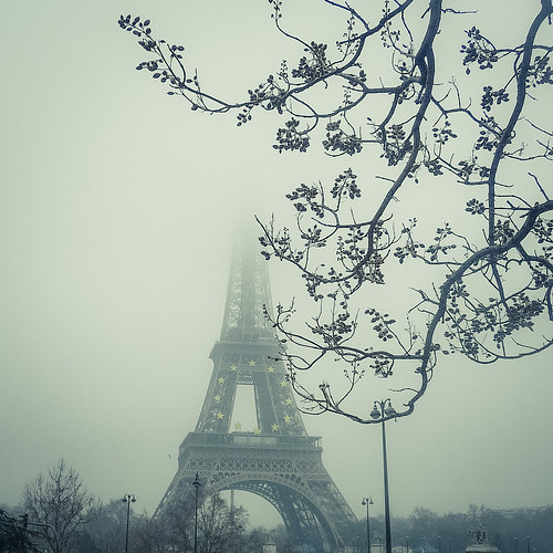 The Iron Lady and Mister Tree (Tour Eiffel, Paris) - Photo : Gilderic