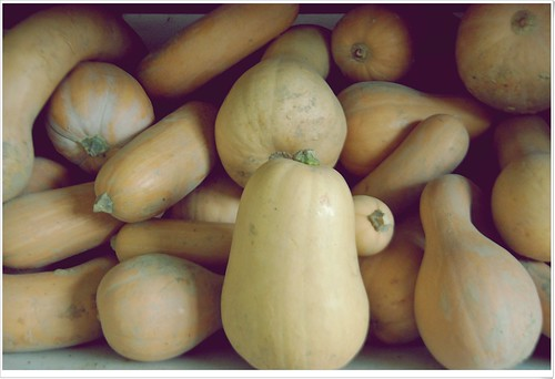 Squash by dogfrog