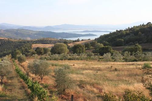 20120809_5162_Lago-di-Trasimeno