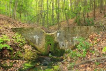 Check Dam 1 Headwaters Of Cherry Creek