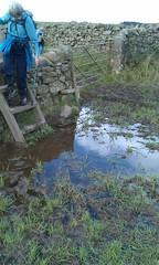 Mud with stile