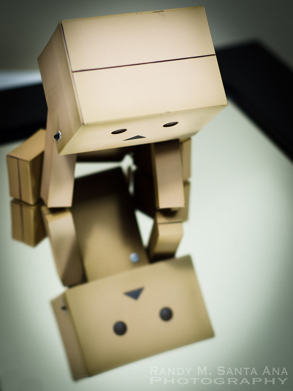 Danbo Adventures: Admiring Her Reflection.
