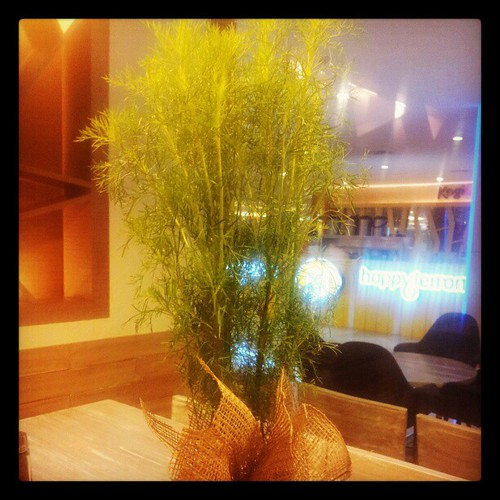 dill on the table