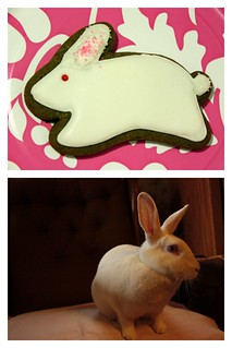 2012 12 Christmas Animal  Cookies (2)
